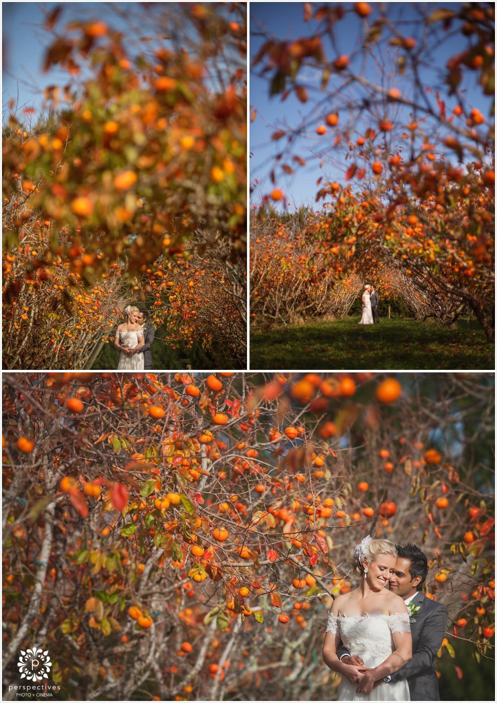 Autumn wedding photo locations Auckland