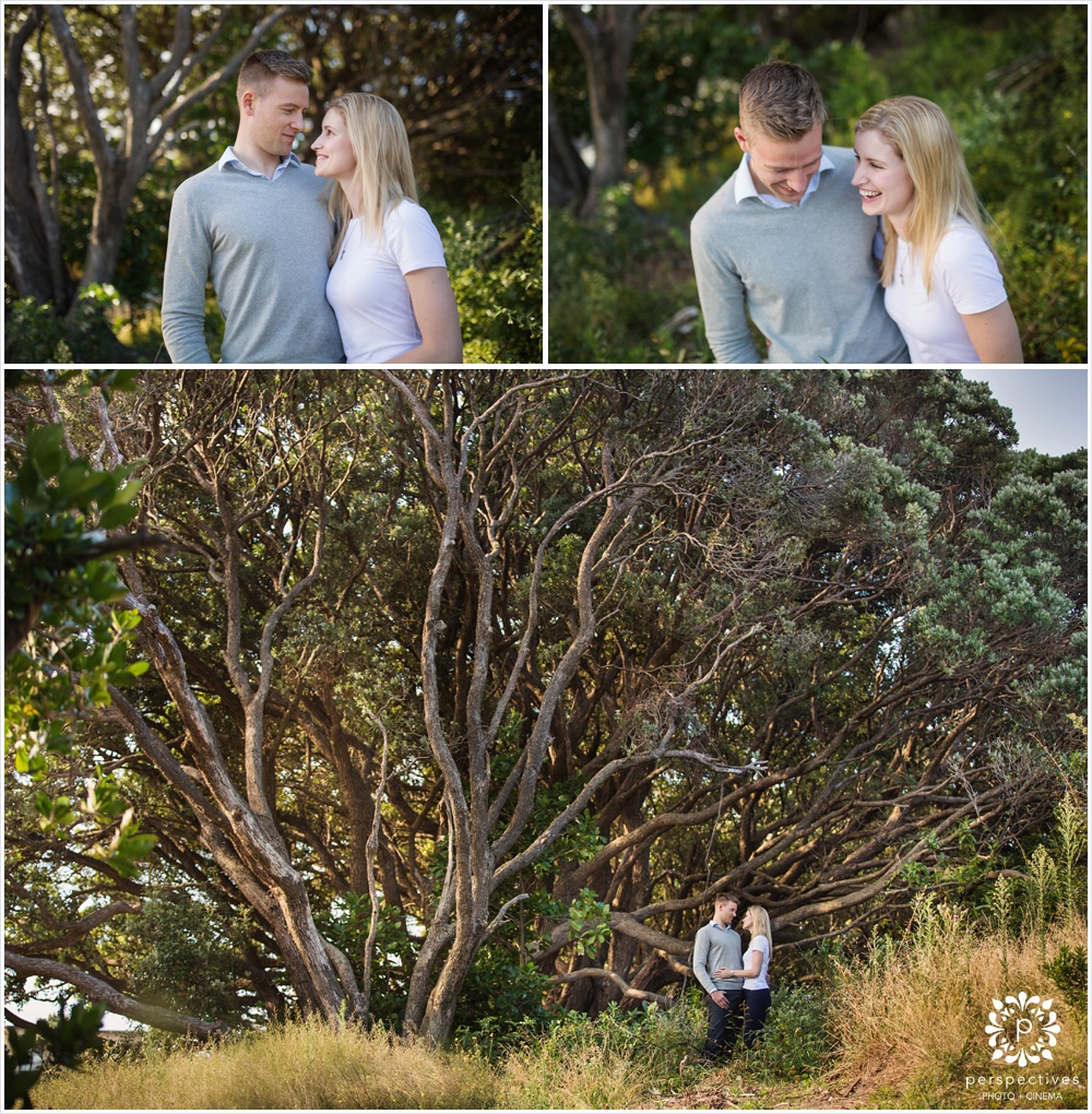 Wellington engagement photos