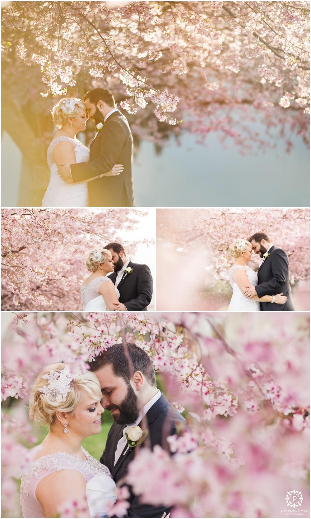 cherry blossom wedding photos