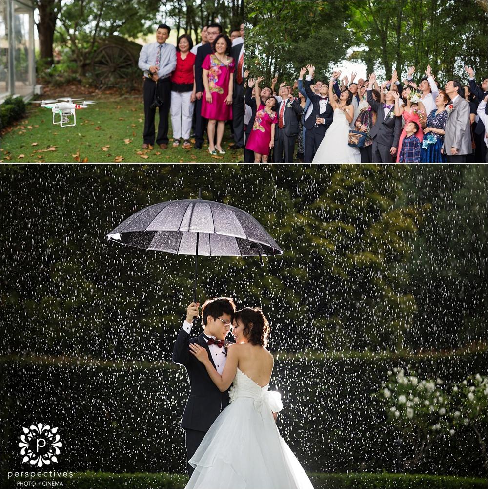 Allely Estate kumeu wedding photos