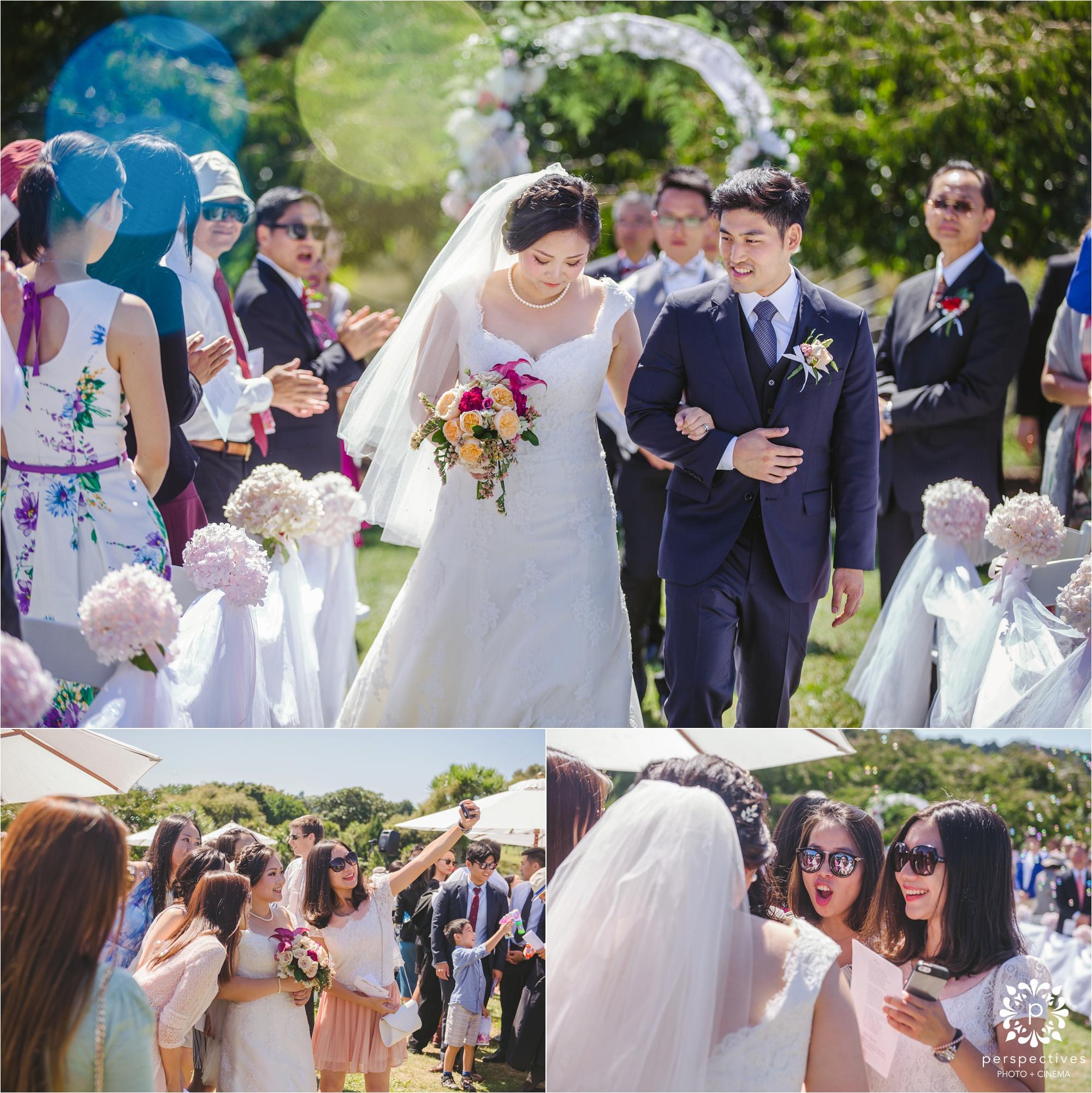 Auckland Botanic gardens wedding