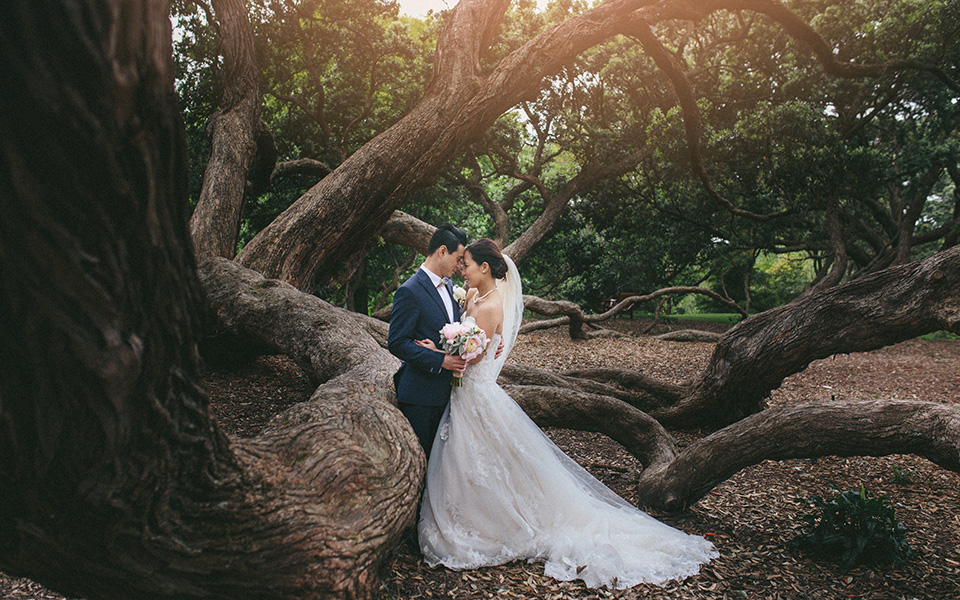 orakei bay wedding video