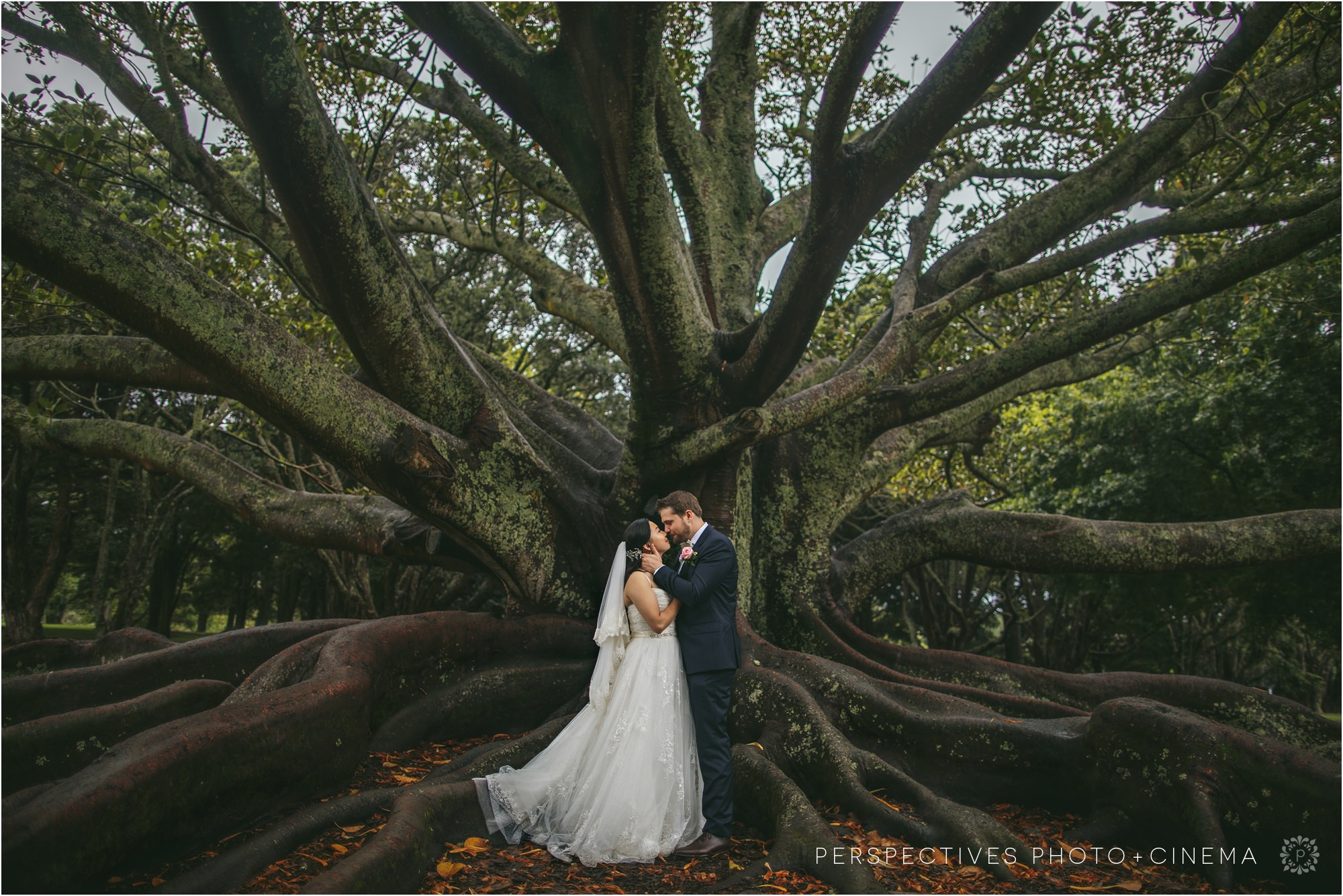 auckland domain wedding photos