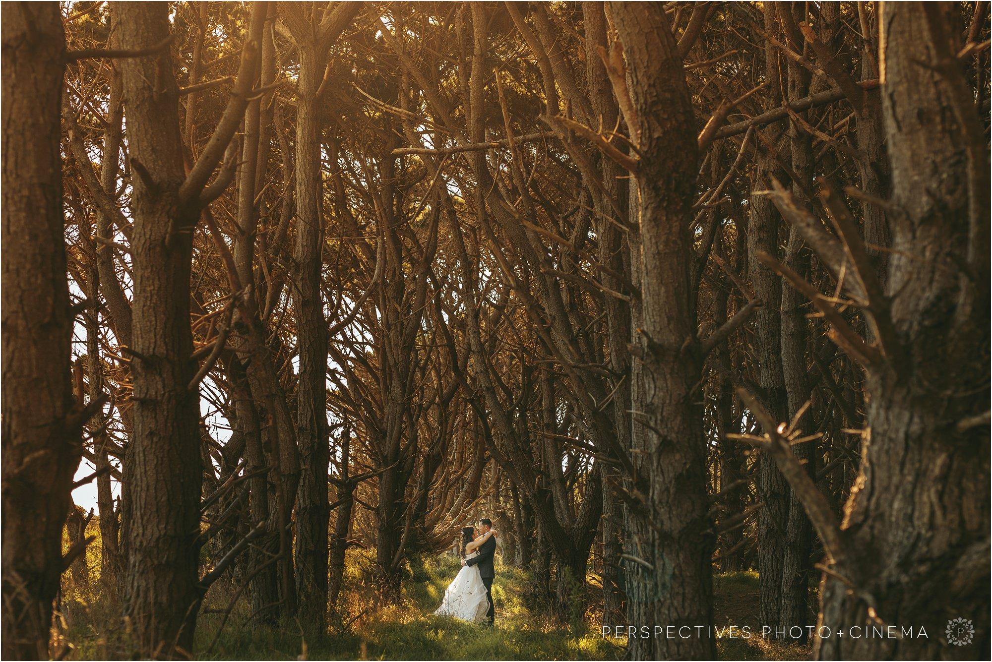 Kumeu_Valley_Estate_Wedding