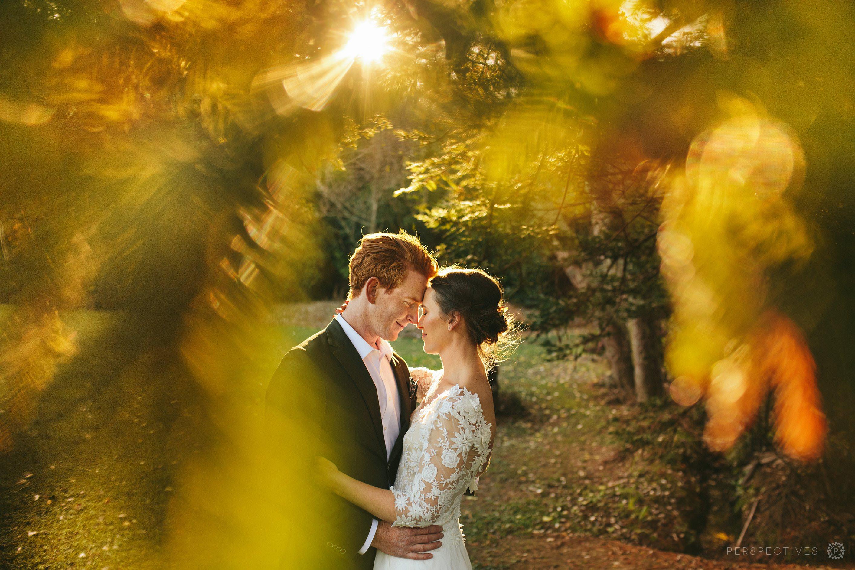 Golden light wedding photos Auckland