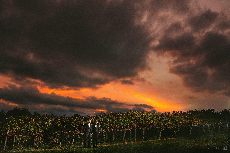 Sunset at Tantalus Estate wedding venue Waiheke
