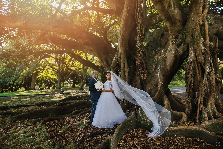 Auckland central wedding photos urban nature